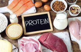 Как протеины влияют на рост мышц?