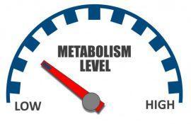 Как ускорить метаболизм (обмен веществ)?