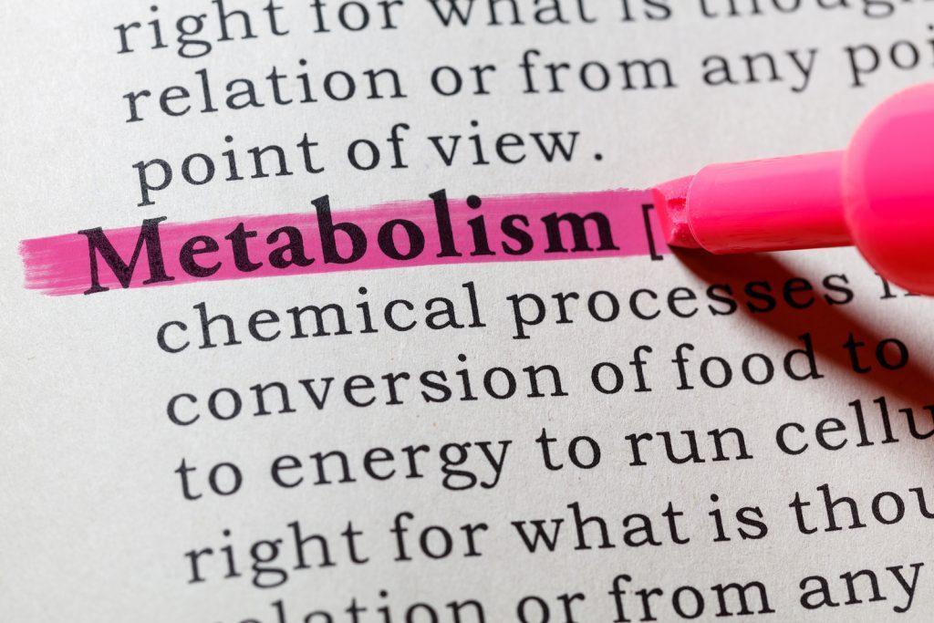 Подводя итоги про разгон метаболизма