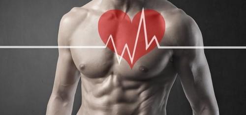 Специфика заболевания спортивное сердце