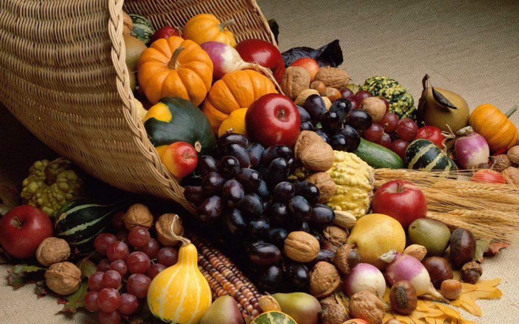 Что из себя представляет основание пищевой пирамиды