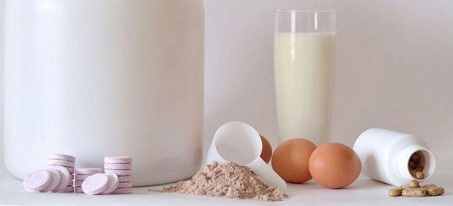 Общие сведения про яичный протеин