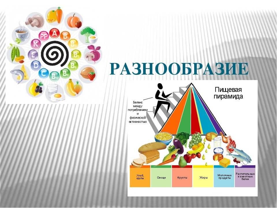 Разнообразие пищевой пирамиды человека