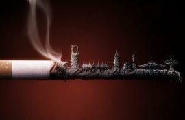 Курение с умом: 5 простых способов снизить вред от сигарет