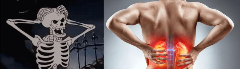 Протеин вреден для почек и костей?