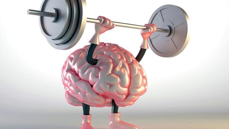 мозг начинает работать быстрее
