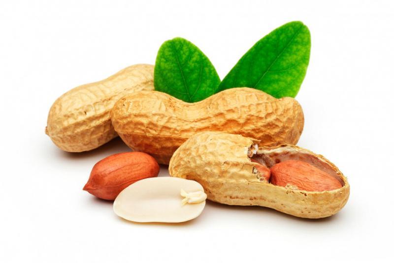 О пользе арахиса для похудения