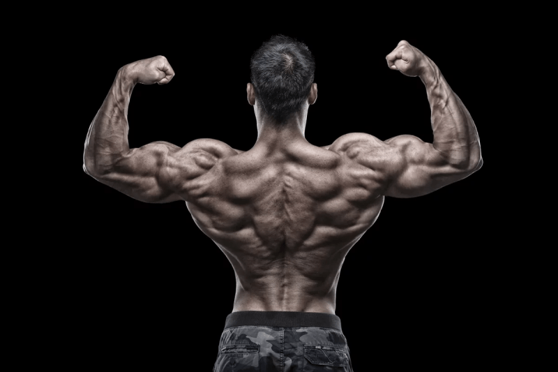 Работают ли бустеры тестостерона?