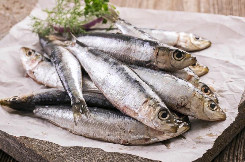 10 продуктов, в которых содержится больше всего рыбьего жира
