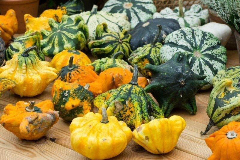 Ноябрьские продукты: что нужно включить в рацион