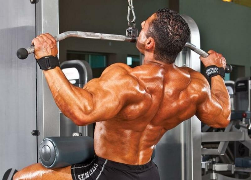 Как преодолеть застой мышечного роста? Научно - практический анализ