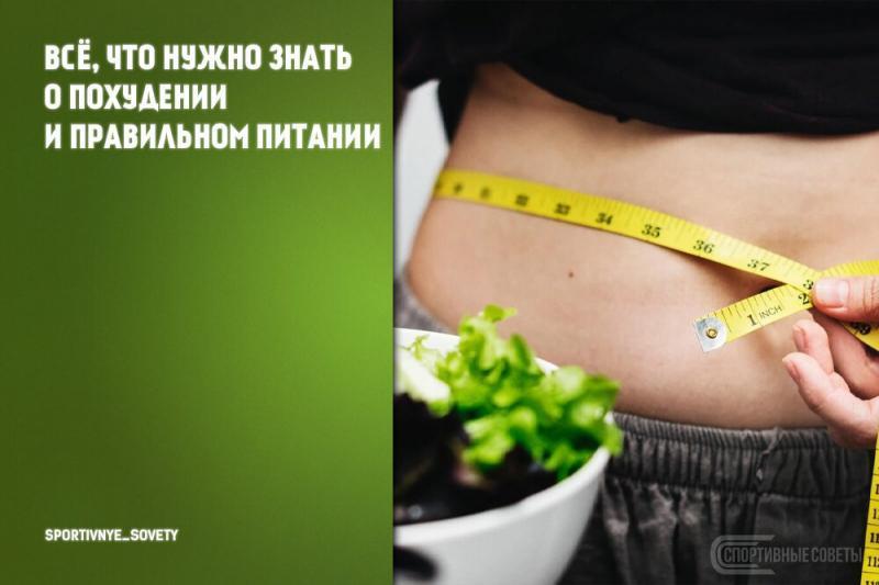 Всё, что нужно знать о похудении и правильном питании