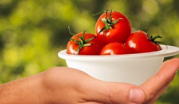 Ученые Узбекистана разработали вакцину против COVID-19 на основе томатов